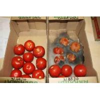 Organic Fresh Fruit and Food Preservative Manufactures