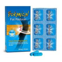 Paiyou Weight Loss Capsule- Orlistat Slimming Products Manufactures
