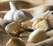 Wholesale Organic Garlic from china suppliers