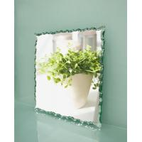 Clear Float Glass  Mirrors