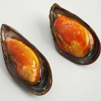 Wholesale FROZEN HALF SHELL MUSSEL from china suppliers
