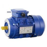Buy cheap MS series three-phase asynchronous motor with aluminium housing from wholesalers