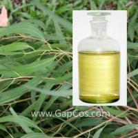 Wholesale High Quality Best Price 100% Natural Eucalyptus Citriodora Oil from china suppliers