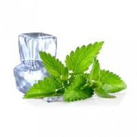 Wholesale E liquid Ice Mint from china suppliers
