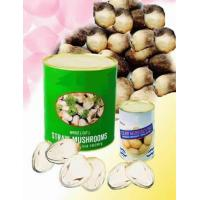 Wholesale Straw mushroom from china suppliers
