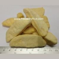 Buy cheap Freeze Dry Mango Item no: FD102 from wholesalers