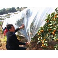 PP Fleece nonwoven fabric for agriculture cover Manufactures