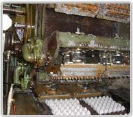 Buy cheap Two rolls egg tray production line from wholesalers