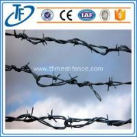 Buy cheap Concertina razor barbed wire, airport prison barbed wire fence, spiral barbed wire from wholesalers