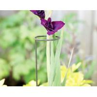 Buy cheap Single Stem Plant Supports Tall flowers and single stem plant supports from wholesalers
