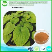 Buy cheap Kava Extract from wholesalers
