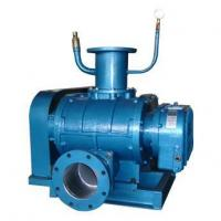 Buy cheap Roots vacuum pump from wholesalers