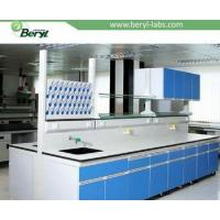 China Medical/Microbiology Laboratory Equipment, Clinical Medical Laboratory Design on sale