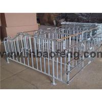 Buy cheap XBF-P0004 Gestation stall from wholesalers