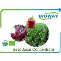 Wholesale Organic Beet Root Juice Concentrate from china suppliers