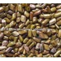 Buy cheap cassia tora seeds from wholesalers
