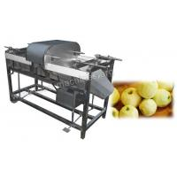 Why Choose This Apple Peeling Machine Manufactures