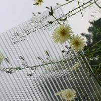 Buy cheap anti-fog polycarbonate sheet for greenhouse from wholesalers
