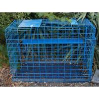 Buy cheap Transport Cage from wholesalers
