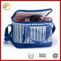 Hot selling Insulated cooler bag for frozen food Manufactures