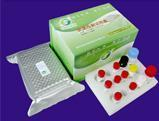 Wholesale Infectious Bronchitis IgG ELISA test kit from china suppliers