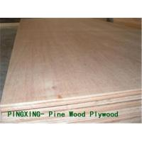 Buy cheap -Radiata Pine Plywood Radiata Pine Plywood from wholesalers