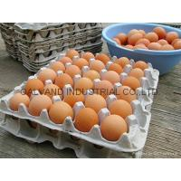 Buy cheap Eco-friendly Waste Paper Pulp Molded Egg Tray Machine from wholesalers