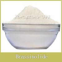 Buy cheap Brassinolide 90%TC, 0.1%AS, 0.1%SP from wholesalers