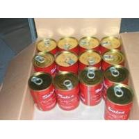 Wholesale Tomato paste 400g tomato paste from china suppliers