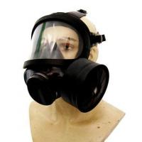 China Police Equipments Product Gas mask (RC-GS03) on sale
