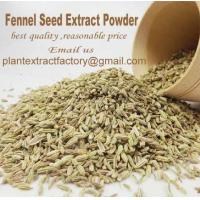 Herb Extract Powder Fennel Seed Extract