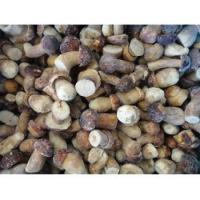 Buy cheap Frozen Mushrooms Frozen Boletus Edulis Whole GT4003 from wholesalers