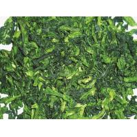 Dried products/Dehydrated food  Dehydration of spinach Manufactures