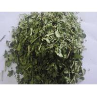 Dried products/Dehydrated food  Dehydrated parsley Manufactures