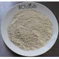 Wholesale Shii-take Powder from china suppliers
