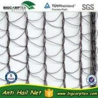 Wholesale orchard anti hail net from china suppliers