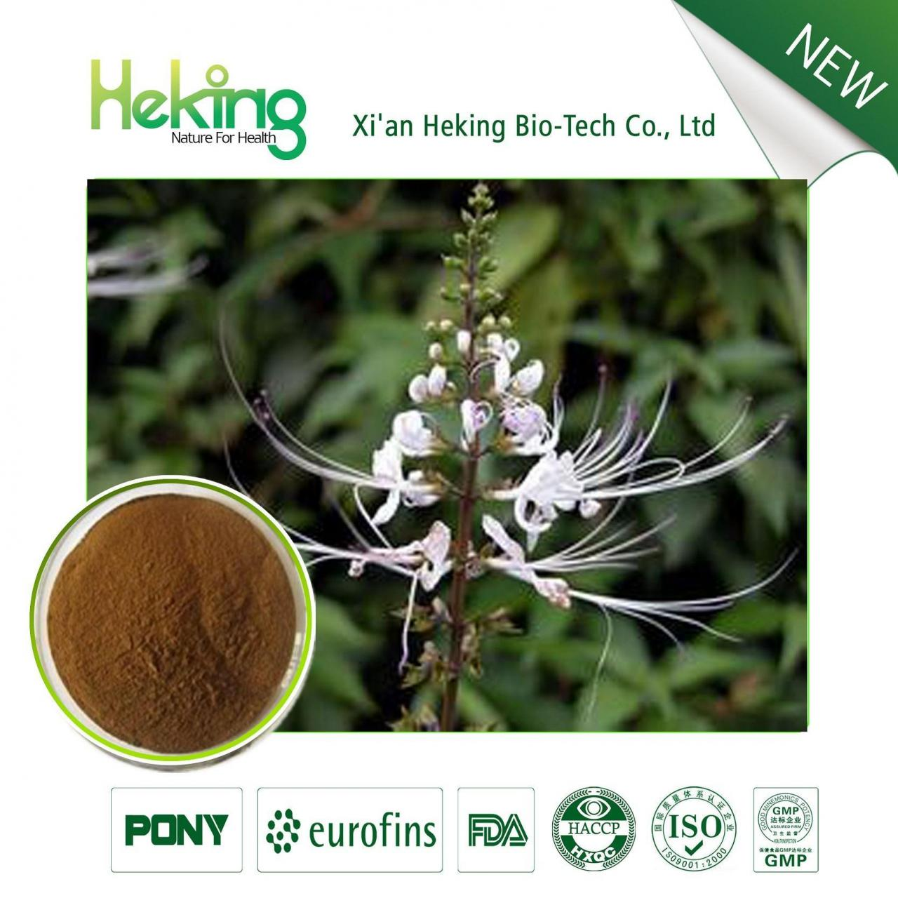 Wholesale Java Tea Extract from china suppliers