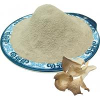 Buy cheap Oyster mushroom powder from wholesalers