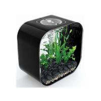 Wholesale Acrylic Fish Tank from china suppliers