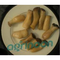 Wholesale Brine King Oster Mushroom from china suppliers