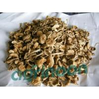 Buy cheap Dried Nameko Mushroom from wholesalers
