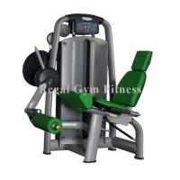Hot Selling Seated Leg Extension Gym Exercise Machines Online (RT002) Manufactures