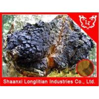 Buy cheap Immunity Enhancers Chaga Mushroom Extract Powder from wholesalers