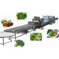 Buy cheap Food machine Furit & Vegetable Cleaning Machine product