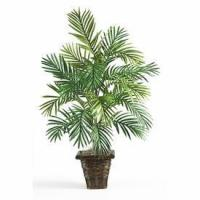 Wholesale Areca Silk Palm with Wicker Basket from china suppliers