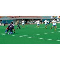 Wholesale Hockey Artificial Turf from china suppliers