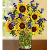 Wholesale Fields of Europe for Summer Deluxe from china suppliers