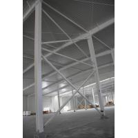 Professional Designed Prefabricated Steel Structure Workshop/Building/Wearhouse/Shed Manufactures