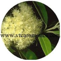 Wholesale Leaves from china suppliers