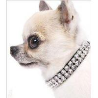 Wholesale collar from china suppliers